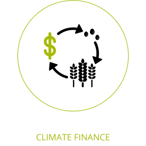 climate finance icon