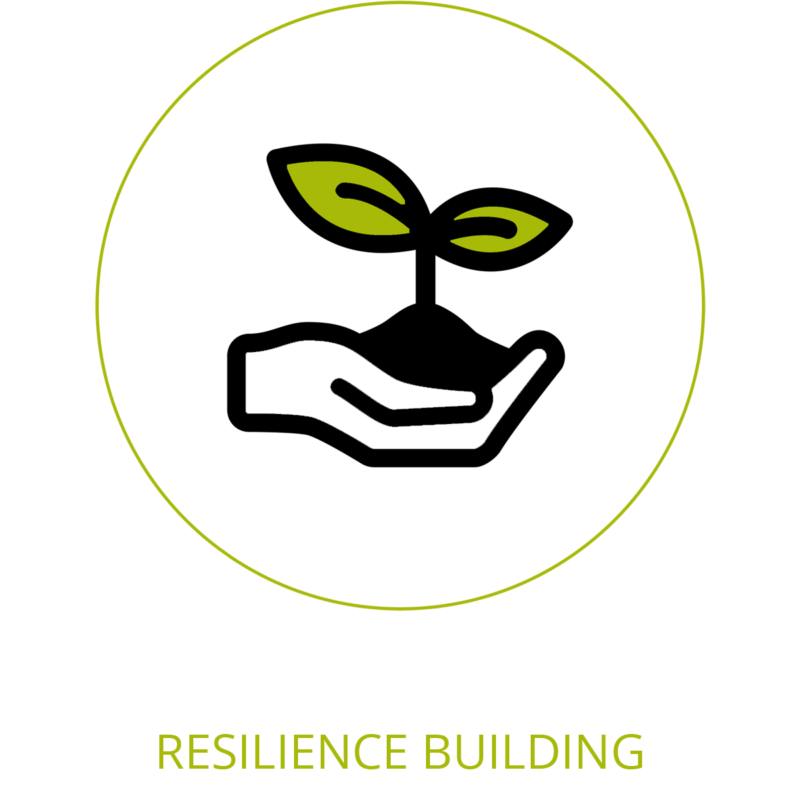 resilience building icon